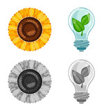 Vector illustration of innovation and technology  symbol. Collection of innovation and nature  stock symbol for web.