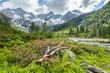 canvas print picture - Sommer in den österreischischen Bergen
