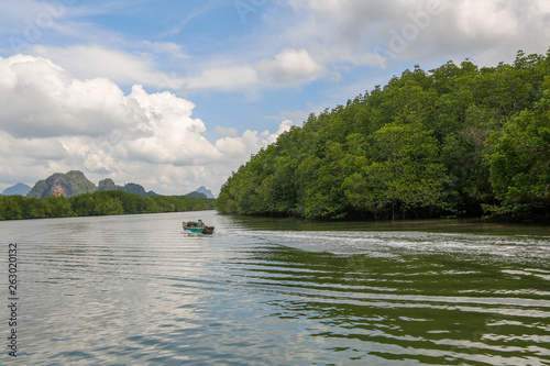 Beatiuful landscape with boat and forest © hreniuca