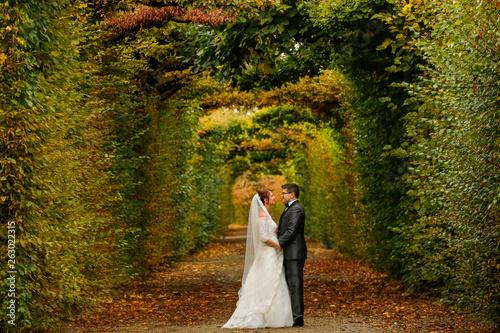 Happy wedding couple posing outdoor in nature
