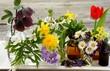 canvas print picture - Heilpflanzen, Tinktur, Naturheilkunde