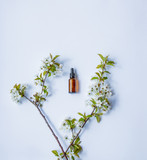 bottle of perfumer for perfume with cherry blosom branch on white background
