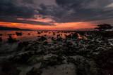 desert de coraux Gili Trawangan Indonésie