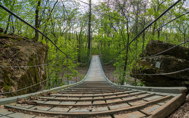 Suspension bridge at Tanyard Creek Nature Trail