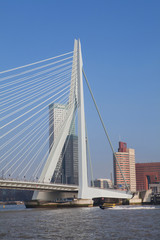 Rotterdam modern bridge Netherlands
