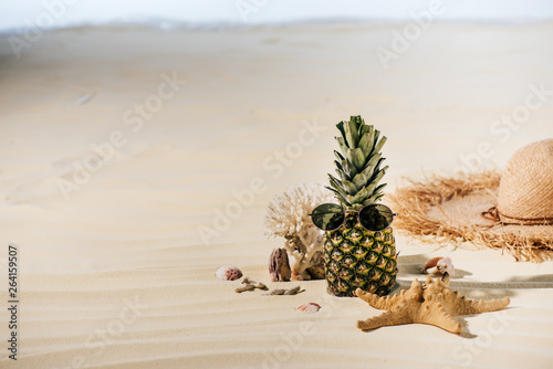 pineapple with sunglasses, starfish, Straw Hat and sea stones on sandy beach with copy space © LIGHTFIELD STUDIOS