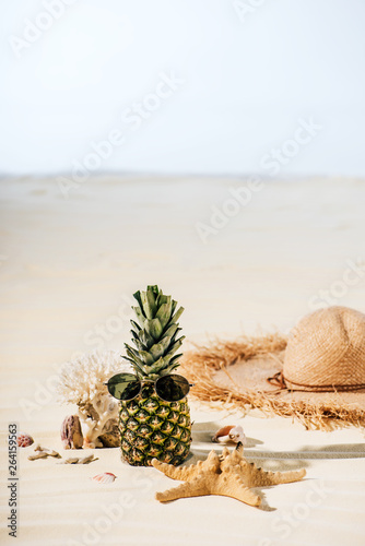 pineapple with sunglasses, starfish, Straw Hat and sea stones on beach with copy space © LIGHTFIELD STUDIOS