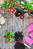 Garden tools, flowers, fertilizers, seeds, garden tools on a wooden background. Spring garden working concept. Copy space. Top view, flat lay.