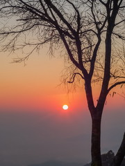 Mountain view morning silhouette of dry tree branches with colorful red sun light in the sky background, sunrise at Kew Lom View Point, Huai Nam Dang National Park, Chiang Mai, Thailand. © Yuttana Joe
