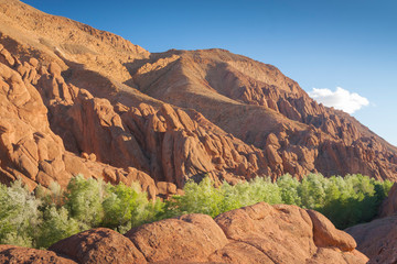 Morocco, Dades Gorge, Monkey Fingers Cliffs