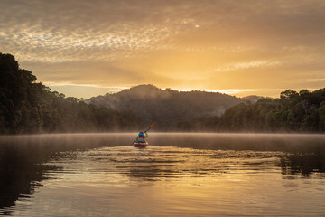 Tranquil paddle in a kayak at dawn down a flat river, with misty rainforest and mountain scenery