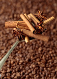 Spoon with anise and cinnamon sticks on the background of coffee beans.