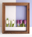 Spring flower frame background