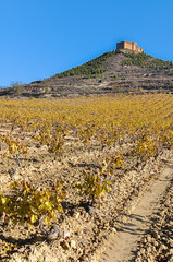 Vineyard in autumn with Davaillo castle as background, La Rioja, Spain © Noradoa