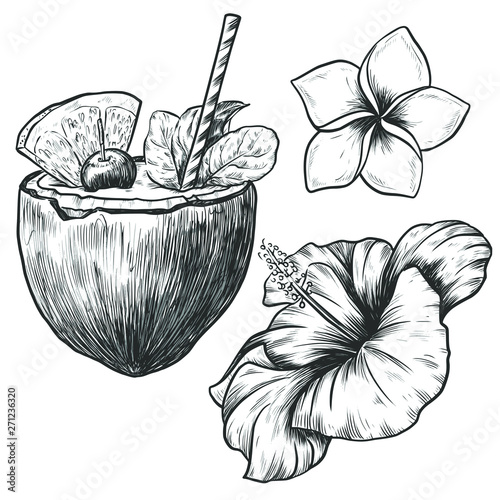 82932a325 Hand drawn sketch coconut cocktail with hibiscus and plumeria flower  isolated on white background. Vintage